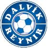 Dalvik/Reynir