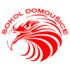Domousice