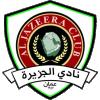 logo อัล จาซีร่า