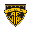 Arturo Fernandez Vial