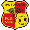 FK Gorodeja 2